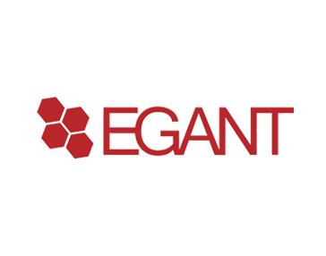 Egant es Partner de Aicox Soluciones